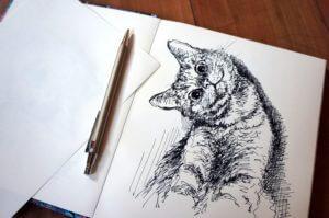 Kot- szkic - rysunek, piórko